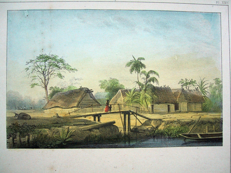 """Negro Hamlet"" (caption translation). This engraving shows several houses on a plantation near a river. Benoit described the layout of these slave houses being located ""several hundred feet from various plantation buildings, and within view of the master's house or the lodgings of the watchmen, is the hamlet that is composed of many huts, constructed of wooden planks and covered with banana/plantain leaves, with a small door and two small windows. . . These houses are surrounded by palisades/fences to protect the vegetables and poultry"" (p. 30). Pierre Jacques Benoit (1782-1854) was a Belgian artist, who visited the Dutch colony of Suriname on his own initiative for several months in 1831. He stayed in Paramaribo, but visited plantations, maroon communities and indigenous villages inland."