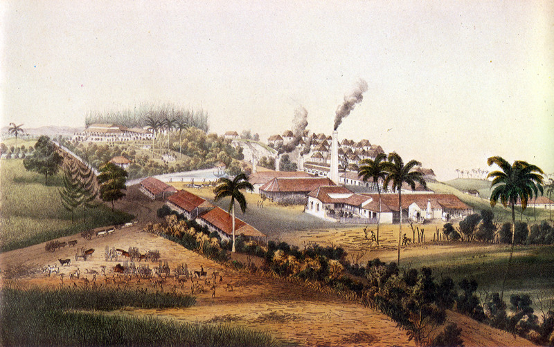 """""""Sugar Plantation of San José de la Angosta"""" (caption translation). This image shows central or yard area of the plantation with steam-driven sugar factory, main house, various outbuildings; houses of enslaved in upper right and people reaping cane and loading it into oxcarts in lower left. The accompanying text gives information on location, ownership, technical features of sugar production and similar data. Justo German Cantero (1815-1871) was born in Trinidad, Cuba. The image shown here is from the 1984 reprint which only reproduces, on a smaller scale, 13 of the 28 colored lithographs found in the original 1857 edition. Images in the latter can be viewed on the British Library website, Images Online."""