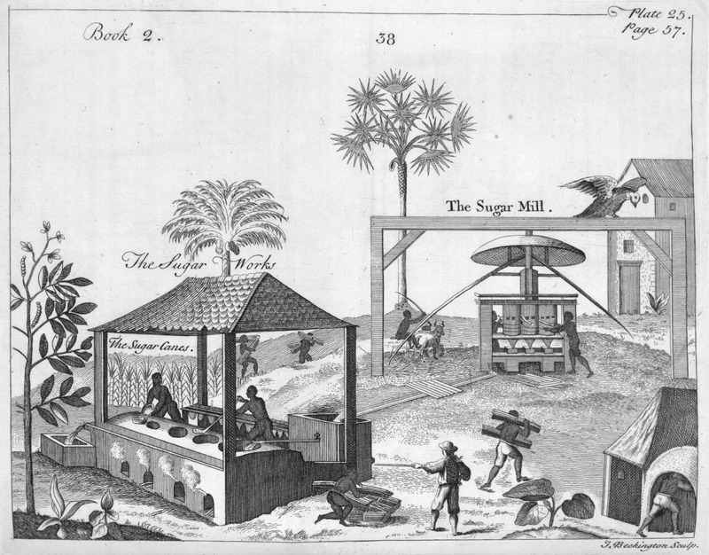 Slaves feeding cane stalks into vertical-roller mill; note, trough through which the cane juice flows to the boiling house (sugar works). This image is derived from Jean Baptiste DuTertre, Histoire Générale des Antilles (1667); see image reference NW0061.