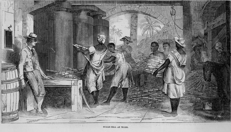 Laborers feeding cane stalks into mill rollers. Image accompanies article, Sugar Cultivation in the West Indies.  Although about a decade after slave emancipation in the British West Indies, this scene (one of four in the article) can easily serve for the later slave period. This same illustration and accompanying article appeared in Ballou's Pictorial (Boston); however, the Ballou article specifies that the locale is Jamaica and that the engraving was made from the designs of an artist who resided for a long time in that island.