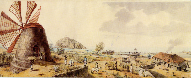 Shows a windmill and enslaved workers engaged in activities associated with bringing canes to the mill; also various outbuildings. Toward the right center is a small illustration of a cattle or horse powered mill; a white overseer is shown on horseback in bottom center. The Barbados Museum greeting card caption specifies that this watercolour painting is attributed to Agostino Brunias, c. 1795. The source of the painting is not given (other than specifying it was held in a private collection in Trinidad), but neither it nor a print of it is today (2010) located in the Museum. This painting or another like it was sold at auction in 1998 (Lot 43, Sale 6015) by Christie's of London; Augustin [sic] Brunias is identified as the painter on Christie's website. The caption/title on the painting's bottom margin, not shown on the greeting card issued by the Barbados Museum, reads: A North View of the Buildings on the Sandy Point Estate of Sir Patrick Blake Baronet in the Island of Saint Christopher. With a view of the north parts of Brimstone Hill, Charle's Fort, Figtree Fort, the town of Sandy Mount, and the Adjacent County. Scholars familiar with Brunias, who we contacted, are skeptical that Brunias did the painting (they prefer not to be acknowledged because they have not viewed the original painting). For biographical notes on Brunias, see image reference NW0009.