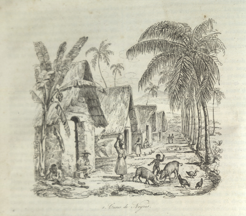 Caption, Case de Negres (cabin/hut of blacks); thatched roofs are made from cane leaves (paille de canne). The author briefly describes life in the slave quarters when the enslaved are not at work; each household/family has its own dwelling, furnished according to the wealth of the inhabitants; also comments on the gardens, small livestock and poultry, and house construction etc. (pp. 25-26).