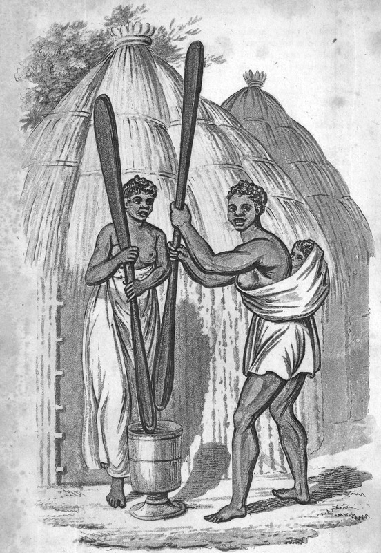 Two women, one wearing a long skirt, the other a short one (who also carries an infant on her back) are using long wooden pestles to pound meal in a characteristically West African fashion; conical thatched roofed houses in the background. Captioned, Slaves beating cuscus, the author, a surgeon aboard the Favourite, made this and other sketches from which the accompanying engravings have been produced . . . the drawings and portraits were made on the spot (pp. iii-iv).