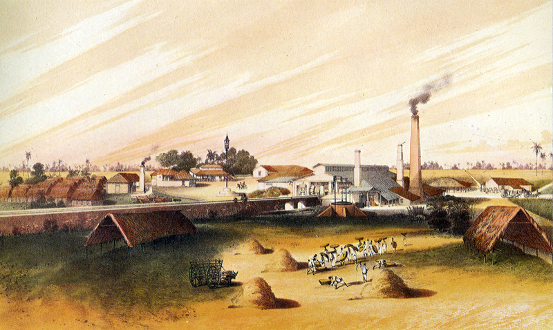 """Sugar Plantation La Amistad"" (caption translation). This image shows a plantation yard, steam mill, great house, etc.; wattle-and-daub thatched houses of the enslaved are on the left, and workers in the field in lower right. The accompanying text gives information on location, ownership, technical features of sugar production (the estate specialized in the production of muscavado sugar and rum) and similar data. Justo German Cantero (1815-1871) was born in Trinidad, Cuba. The image shown here is from the 1984 reprint which only reproduces, on a smaller scale, 13 of the 28 colored lithographs found in the original 1857 edition. Images in the latter can be viewed on the British Library website, Images Online."