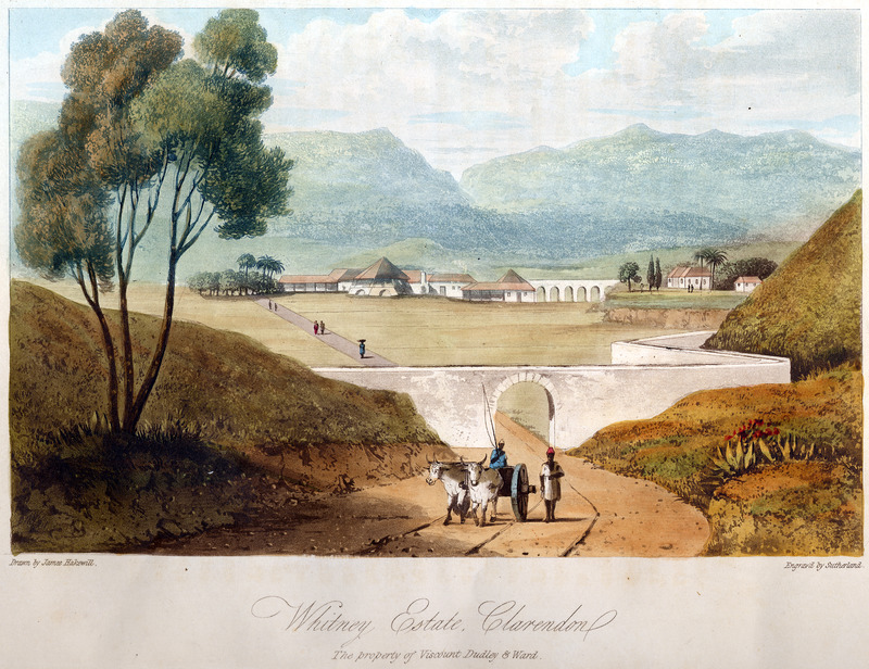 This image shows the Whitney plantation with slave houses on the right. James Hakewill (1778–1843) was an English architect known for illustrated publications. Several of his works relating to Jamaica can be found in T. Barringer, G. Forrester, and B. Martinez-Ruiz, Art and Emancipation in Jamaica: Isaac Mendes Belisario and his Worlds (New Haven : Yale Center for British Art in association with Yale University Press, 2007), passim.