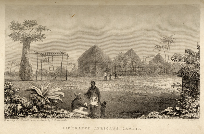 Caption: Liberated Africans, Gambia. Shows village of Melville, including circular wattle-and-daub houses, inhabited by Africans who had been liberated from slave ships by the British navy. The author briefly describes the houses, their furniture and utensils, gardens, and the dress and speech/language of the inhabitants. For the liberated Africans, he writes are composed of so many different tribes, ignorant of each other's language, that . . . they are obliged to learn a smattering of English to communicate with each other (pp. 75-76).