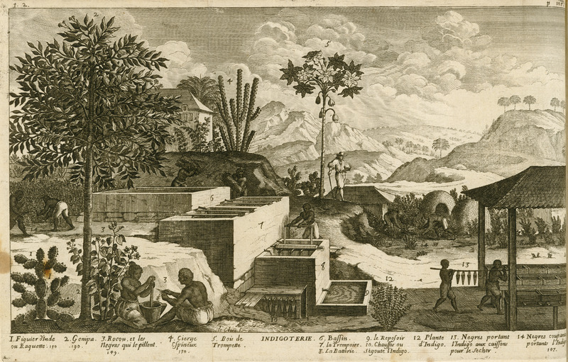 Titled Indigoterie, this picture shows various phases of the cultivation and processing of indigo as well as illustrating other plants and trees. Captions underneath are linked to numbers in the illustration, and these are sometimes cross-referenced to pages where more details are given. Equipment and procedures used in indigo are shown (6, 7, 8, 9, 13, 14). Also depicted are plants (1, 4, 12 [indigo]) and trees (2, 5); the dye plant annatto (rocou) is being crushed in a mortar (3). Enslaved males and females are depicted, as well as a European overseer. Other versions of this illustration can be found in: Jean-Baptiste Labat, Nouveau Voyage aux Isles de l'Amerique (Paris, 1722, vol. 1, between pp. 168 and 169; also Paris, 1742, vol.1, following p. 268 [see image JCB_35892-10 on this website], and Pierre Pomet, A complete history of drugs (London, 1748, 4th ed.); see image Pomet-92 on this website.