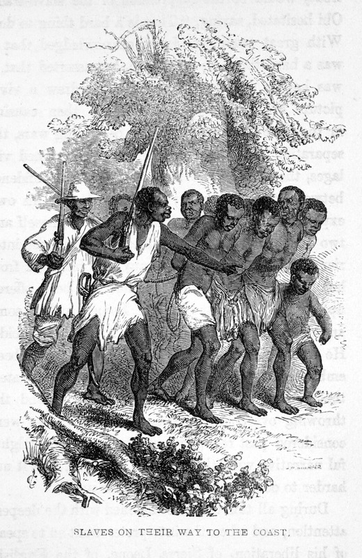Caption, Slaves on their way to the coast. The author, an anti-slavery missionary, traveled to Nigeria in the early 1850s. In Aboh, a town/village, on the western bank of the Niger river, near the Niger delta and Bight of Benin, in Ibo land, her Ibo interpreter told her how difficult it was to completely stop the slave trade. He drew a vivid picture of the misery it was even then causing in the Iboe country itself--the desolating wars, the separation of parents and children, the ruined villages, the uncultivated fields . . . . he described the sufferings of himself and two hundred other boys on their way from the interior to the coast; told of many that had died from hunger and fatigue, of others that had been offered up as sacrifices by the king of Bonny, and of some among those poor lads who had committed suicide. He was taken aboard a slave ship, but ultimately liberated by the British Navy and taken to Sierra Leone (p. 66). This same image was published two years earlier in an apparently anonymously authored work, Africa Redeemed: or, the means of her relief illustrated by the growth and prospects of Liberia (London, 1851, facing p. 184). In Africa Redeemed, the image is captioned Gatumba drives the captive Deys from Millsburgh. The reference is to a chief Gatumba and his slave raiding activities in 1840 on the Deys, a people across the border from Liberia in neighboring Sierra Leone (see pp. 183-85). Millsburg [sic] is in western Liberia, not far from Monrovia.