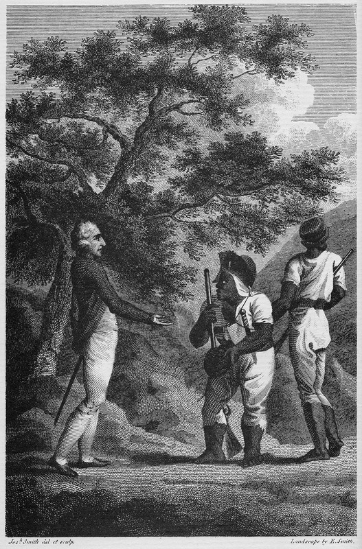 """This image portrays the leader of the western Maroons of Trelawney Town with a British officer.  The African name Cudjoe corresponds to the Akan day name Kojo, Codjoe or Kwadwo from the Voltaic region. A peace treaty was concluded between the Maroons and the British under a large cotton-tree on March 1, 1738. According to Dallas, """"Cudjoe was rather a short man, uncommonly stout, with very strong African features. . . He had a very large lump of flesh upon his back, which was partly covered by the tattered remains of an old blue coat, of which the skirts and the sleeves below the elbows were wanting. Round his head was tied a scanty piece of white cloth. . . He had on a pair of loose drawers that did not reach his knees, and a small round hat with the rims pared so close to the crown, that it might have been taken for a calabash, being worn exactly to the rotundity of his head. On his right side hung a cow's horn with some powder, and a bag of large cut slugs; on the left side he wore a mushet, or couteau, three inches broad, in a leather sheath, suspended under his arm by a narrow strap that went round his shoulders. He had no shirt on, and his clothes. . . as well as the part of his skin that was exposed, were covered with the red dirt of the Cockpits, resembling oker"""" (vol. 1, pp. 53-54)."""