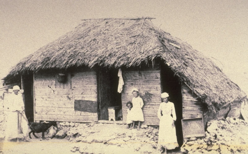 Roof of cane trash; kitchen extension on right. Although the photo is long after slave emancipation, the house closely resembles wooden plank houses with thatched roofs found among Barbados plantation slaves, particularly in the pre-emancipation (pre-1834/38) decades of 19th century.