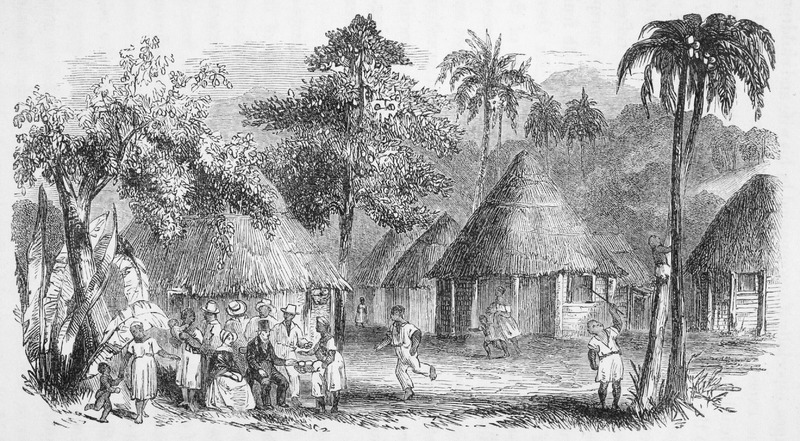 Captioned Visit of a Missionary and Wife to a Plantation Village, this shows the missionary and his wife, seated on left, being greeted by villagers. Depicted are the village's thatched-roof houses and the clothing styles of the residents; boys climbing a cocoanut tree are on right. The author, a Baptist missionary, had resided in Jamaica since 1823.