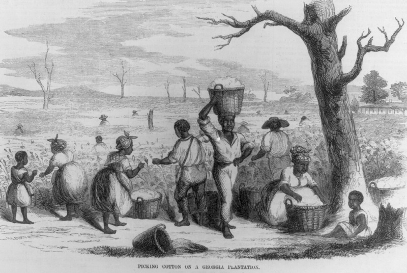 Men, women, and children in the field. Accompanies an article, Cotton Picking in Georgia (p. 49): The spirited engraving . . . is from a graphic sketch made expressly for us . . . and represents a party of field hands in Georgia picking cotton in the fall.