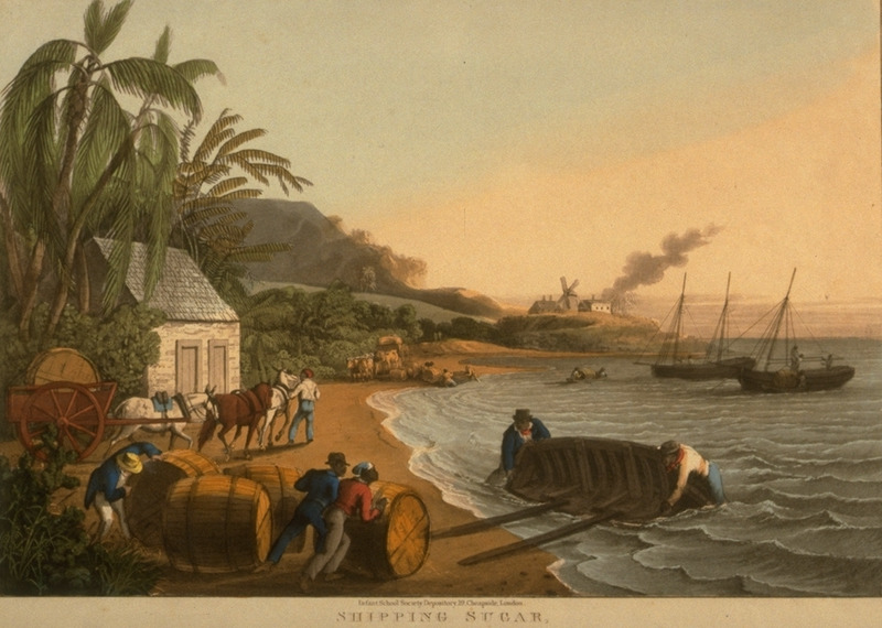 Caption, Shipping Sugar, Willoughby Bay; shows slaves rolling hogsheads of sugar, brought to shore by ox carts, aboard lighters for transport to ocean- going vessels. Little is known of William Clark although he was probably a manager or overseer of plantations in Antigua. The ten prints in the collection (only 9 of which are shown on this website) are based on his drawings, converted into prints by professional printmakers. All of the prints are shown and extensively described in T. Barringer, G. Forrester, and B. Martinez-Ruiz, Art and Emancipation in Jamaica: Isaac Mendes Belisario and his Worlds (New Haven : Yale Center for British Art in association with Yale University Press, 2007), pp. 318-321; the descriptions in the Yale publication are based on Clark's unpaginated text and quotations from that text.