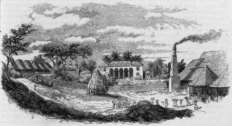 Captioned, A Sugar Estate, in the vicinity of Guanajay. Shows the slave houses on the left, owner's mansion in center, steam-powered sugar mill on the right; slaves are carrying canes to the mill. Accompanies an article, Three Weeks in Cuba, by an artist, wherein the author describes his visit to this estate and the buildings involved in sugar manufacture; he also describes the process of sugar manufacture as well as the treatment of the enslaved. The sugar harvest season, he writes, is one of severe labor for the negroes, and many of them compelled to work at least eighteen hours each day, suffer much from being overtasked. The larger portion of the active slaves are natives of Africa . . . .The lash is laid on without a stint, for the most trivial offenses, and often only as a spur to labor  (p. 168). LOC has inscribed on photo HM vol. 6-1852, but this is an error; the vol. date is 1853. See also image reference Album-26.