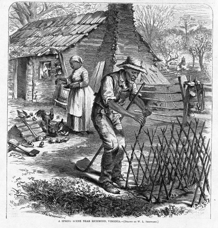 This image shows a man and woman in front of their cabin with a chimney planting a kitchen garden and feeding chickens. Although post-emancipation, this scene is evocative of the late antebellum period. Harper's Weekly: A Journal of Civilization was an American political magazine based in New York City and published by Harper & Brothers from 1857 until 1916. It featured foreign and domestic news, fiction, essays on many subjects and humor, alongside illustrations. It covered the American Civil War extensively, including many illustrations of events from the war.
