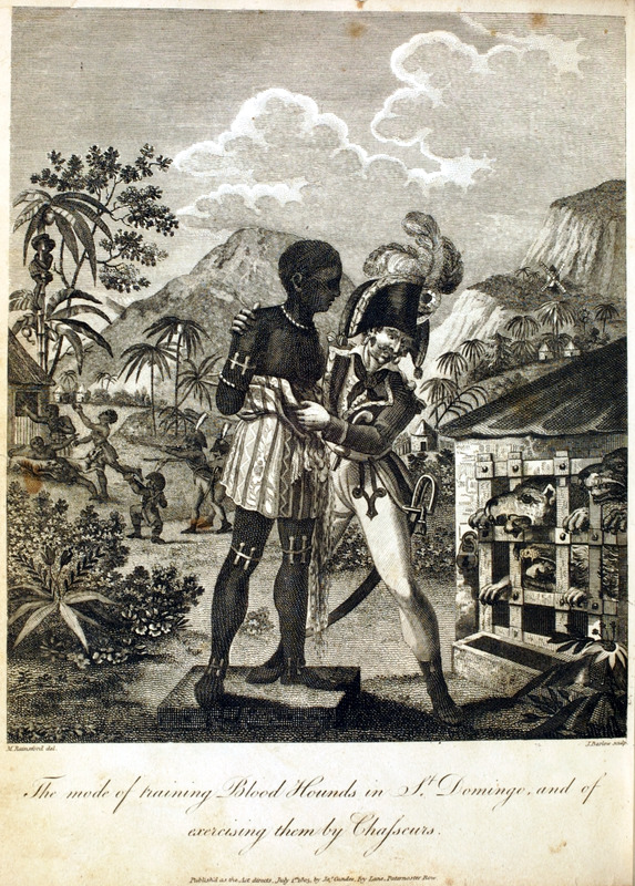 The Mode of Training Bloodhounds in St. Domingue and of exercising them by Chasseurs. The author, a British military officer who visited Haiti, writes:  As they [the dogs] approached maturity, their keepers procured a figure roughly formed as a negro in wicker work, in the body of which were contained the blood and entrails of beasts. This was exhibited before an upper part of the cage, and the food occasionally exposed as a temptation, which attracted the attention of the dogs to it as a source of the food they wanted. This was repeated often, so that the animals with redoubled ferocity struggled against their confinement while in proportion to their impatience the figures was brought nearer, though yet out of their reach, and their food decreased till, at the last extremity of desperation, the keeper resigned the figure, well charged with the nauseous food before described, to their wishes. While they gorged themselves with the dreadful meat, he and his colleagues caressed and encouraged them. By these means the whites ingratiated themselves so much with the animals, as to produce an effect directly opposite to that perceivable in them towards the black figure; and, when they were employed in the pursuit for which they were intended, afforded the protection so necessary to their employers (pp. 426-27).