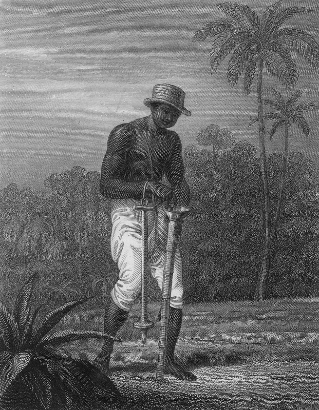 Shows a black man, wearing a hat, planting seeds (cotton?) by dropping them through a tube; a dibble for making holes dangles from his right wrist. The text describes various labor saving devices that could be used by slaves, and it is unclear if this device was actually observed or a device suggested by the author.
