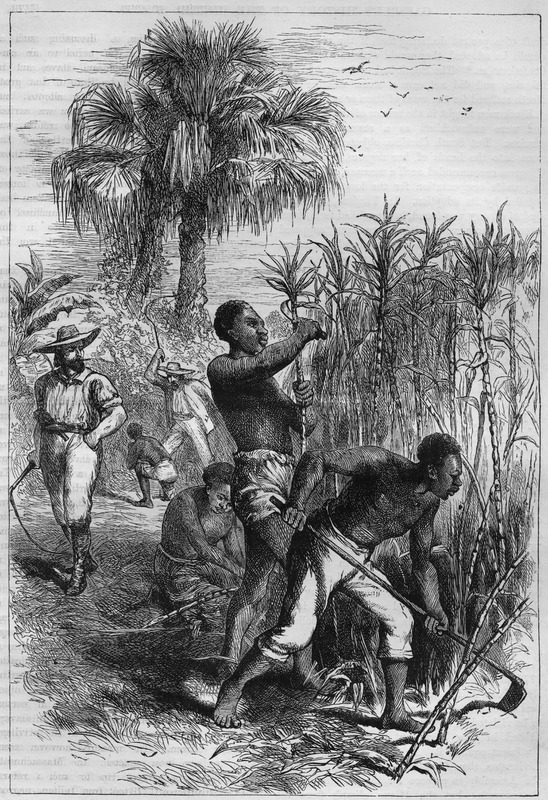 This illustration seems to have been duplicated from another, unidentified source. It is also an artistic rendition of plantation slavery. In the foreground, one man is cutting cane, another is weeding the fields with a hoe (the two activities do not occur concurrently in reality); a woman is kneeling tying the cane stalks into a bundle. A white overseer with a whip in hand is looking on while in the background another white is whipping an enslaved person. The location is not identified, but it is a tropical or semi-tropical scene, perhaps in the British or French West Indies. The illustration accompanies a discussion of slavery in the colonies in the 1780s, but does not seem to be directly related to what is discussed in the text.
