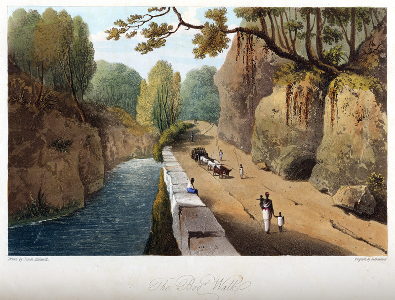 This image shows carters driving team of oxen pulling wagon loaded with hogsheads, while woman walking with small children by the river Rio Cobre. James Hakewill (1778–1843) was an English architect known for illustrated publications. Several of his works relating to Jamaica can be found in T. Barringer, G. Forrester, and B. Martinez-Ruiz, Art and Emancipation in Jamaica: Isaac Mendes Belisario and his Worlds (New Haven: Yale Center for British Art in association with Yale University Press, 2007), passim.