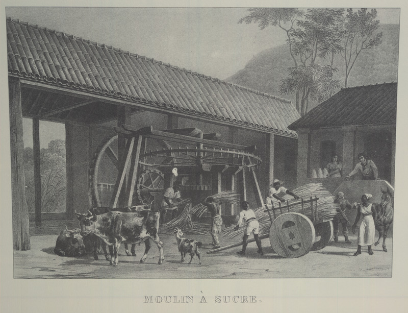 A mill yard and water-powered mill with vertical rollers; cart with canes to be crushed; the plantation manager (?) and his wife (?) are on the veranda; next to the woman are sugar cones. The same illustration, captioned Brazilian Sugar Mill, was later published in the Illustrated London News (March 29, 1845; vol. 6, p. 197), with a brief account of slave labor on Brazilian sugar plantations. For an analysis of Rugendas' drawings, as these were informed by his anti-slavery views, see Robert W. Slenes, African Abrahams, Lucretias and Men of Sorrows: Allegory and Allusion in the Brazilian Anti-slavery Lithographs (1827-1835) of Johann Moritz Rugendas (Slavery & Abolition, vol. 23 [2002], pp. 147-168). (Thanks to Lyle Browning for his help with the mill identification.)