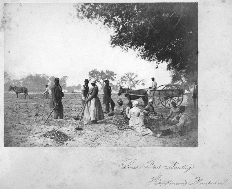 A critical discussion of this apparently posed photograph on Hopkinson's plantation (taken by Henry P. Moore, 1833-1911) is in W. Jeffrey Bolster and Hilary Anderson, Soldiers, Sailors, Slaves, and Ships: The Civil War Photographs of Henry P. Moore (Concord, New Hampshire: New Hampshire Historical Society), 1999, p. 78; see also, Ellen Dugan, ed., Picturing the South, 1860 to the Present (San Francisco, Chronicle Books, 1996), p. 35. The photo shows the fanner basket, probably of African origin, used for rice and other purposes, in the lower right corner (John Vlach, The Afro-American Tradition in Decorative Arts [Cleveland Museum of Art], 1978), fig. 1). The LOC image is a photographic print on a card mount; the Schomburg Center for Research in Black Culture (New York City) has a copy taken from some publication.