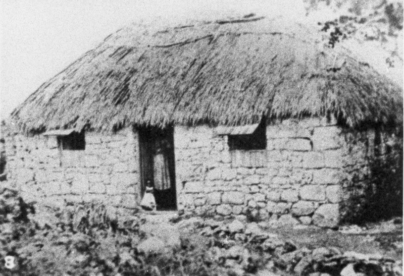 House made of coral limestone; thatching appears to be sugar cane trash. No date on photo, but very early 20th cent., perhaps late 19th. Although long after slave emancipation in the British West Indies, the house is very similar, if not identical, to one type of slave housing that became increasingly common in Barbados during the first several decades of the 19th cent.