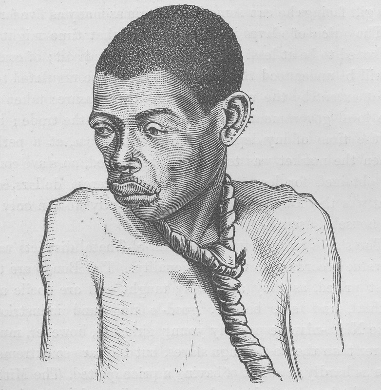 Head and face of unnamed captured East African woman; shows remnant of coffle rope around her neck. Married women among the Babuckur, according to Schweinfurth, pierce the rims of their ears and both their lips, and insert bits of grass stalk about an inch long in the holes . . . . The portrait . . . is that of a Babuckur slave bound by a leather rope ( vol. 2, pp. 258, 419). This image was reproduced in Thomas W. Knox, The Boy Travellers on the Congo (New York, 1888, p. 217), which is a condensation of H. M. Stanley's Through the Dark Continent (New York, 1878). The publishers of the Knox book took their images from several volumes of African travel exploration (p.2) but do not acknowledge their sources. This image does not seem to appear in any of Stanley's works, and was most likely taken from the earlier published volume by Schweinfurth. Although this image is occasionally reproduced in modern secondary works which cite Knox, the original source is not given; sometimes the individual is erroneously identified as a West African man.