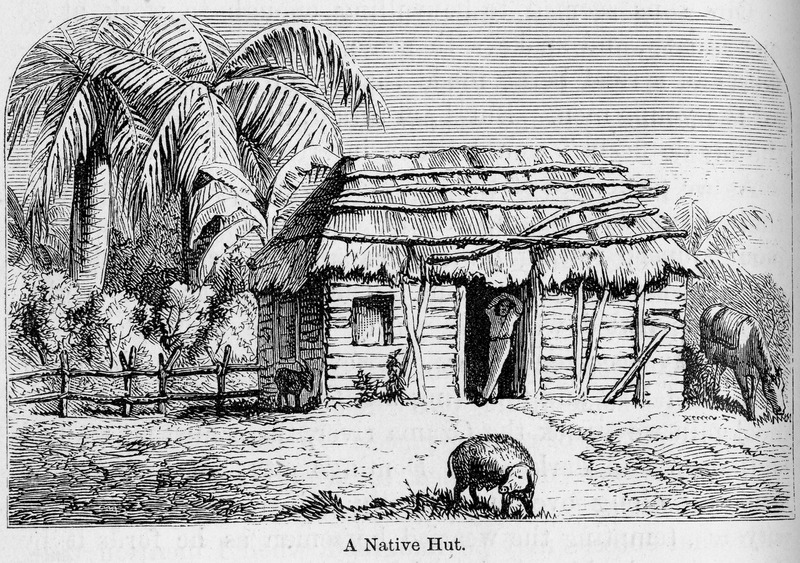 """This image depicts a circular hut with a thatched roof. According to Hazard, """"the wattle-and-daub construction and thatched roof, apparently with palm fronds, was a very common house type throughout the Caribbean at this period"""" (p, 284). Samuel Hazard (1834-1876) was an American publisher and bookseller from Pennsylvania, who collected engravings and prints. After joining the union army, he rose through the ranks as brevet major until he resigned on surgeon's certificate of disability in 1865. After, he traveled to Cuba and Santo Domingo as a correspondent of the Philadelphia Press during protracted conflict related to the decolonization of the Spanish Caribbean. See also image Hazard4."""