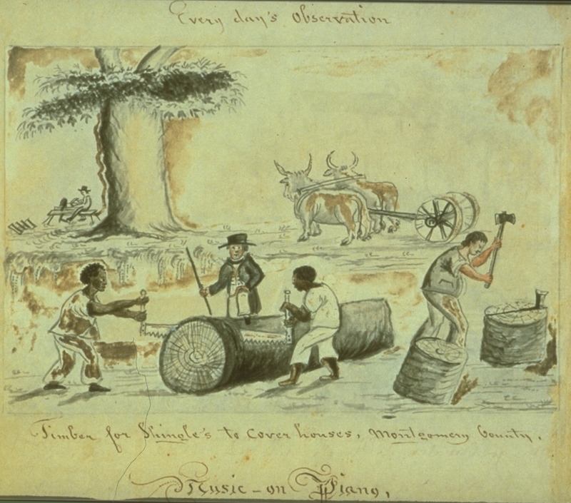 Caption, timber for shingles to cover houses, Montgomery county; scene shows two black men sawing a tree tree trunk and a white man splitting logs.