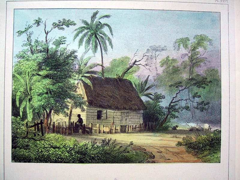 """Negro Houses"" (caption translation). This engraving shows a house nestled in a jungle with a person fixing a fence out front.  Benoit described how ""each slave has a small house, of 9 to 10 feet high and 10 to 12 feet in diameter, with a door and a small window. Furnishings consist of one or two beds, raised about a half a foot from the ground. The house is made of bamboos on which there is a matting without a cross bar. Slaves usually cover themselves with a wool blanket, and since they are very sensitive to the nighttime dampness they make a fire in the middle of their hut which is tightly closed"" (p. 53). Pierre Jacques Benoit (1782-1854) was a Belgian artist, who visited the Dutch colony of Suriname on his own initiative for several months in 1831. He stayed in Paramaribo, but visited plantations, maroon communities and indigenous villages inland."