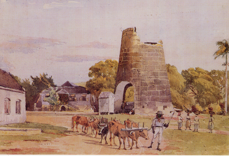 Shows owner's or manager's house of Andrews plantation in center rear; to right, a windmill base; also figures of women with dung baskets on their heads. In foreground, carter with team of oxen. Though depicting a scene in the post-emancipation period, this image evokes the slave period.