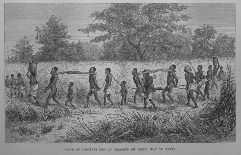 "The Livingstone's apparently witnessed this scene in July, 1861, which shows men linked by yokes, children and women attached by chains or ropes, with their African guards armed with guns. Mbame was a village chief, friendly to Livingstone. Tette/Tete, a village on the Zambezi River, located in in the East Central Africa region. This village was the last Portuguese outpost on the Zambezi. David Livingstone (1813–1873) was a famous Scottish physician, Christian missionary, explorer and abolitionist. His interest was to locate the source of the Nile River. His missionary work also reinforced the European ""Scramble for Africa"" and the colonization of the continent.  This image was published not long after the appearance of the New York edition to accompany an article, Livingstone's Last African Expedition (pp. 709-23). See also in Harper's New Monthly Magazine, vol. 32 (Dec. 1865-May 1866), p. 719. The article gives a summary account of the Livingstones' Narrative of an Expedition. The captives shown here were destined for the East African trade.  The image and its historical context, as well as sources in which it is found, is discussed at length in Jerome Handler and Annis Steiner, Identifying Pictorial Images of Atlantic Slavery: Three Case Studies, Slavery and Abolition 27 (2006), 52-54. Compare this image with image C017 on this website."