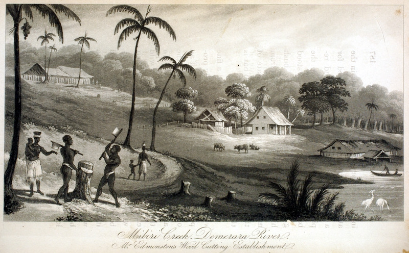 Caption, Mibiri Creek, Demerara River. Mr. Edmonstone's Wood Cutting Establishment. The author sketched this scene while visiting this place. In left foreground, two male slaves are cutting wood, next to them are their wives and children. In the very lower right hand corner is the boat-house, above it the main dwelling house, and on the top of the hill were the Negro huts, with some cocoa-nut trees (pp. 187-188).