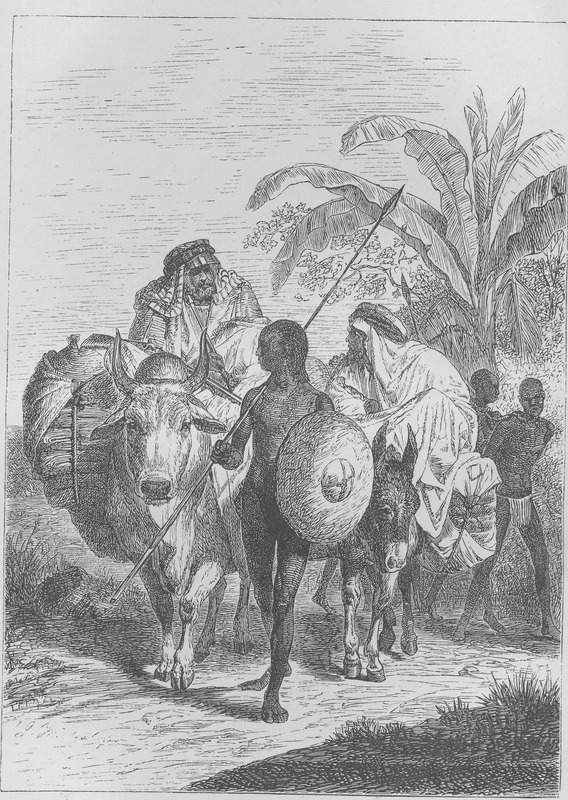 Caption, Slave -Traders from Kordofan; shows Arab slave traders and some of the enslaved in a coffle with guards. Schweinfurth (vol. 2, p. 410) writes: Probably the overland slave-trade along the roads of Kordofan had never been so flourishing as in the winter of 1870-71, when I found myself at its very fountain-head ; he describes slavers and slave-trading in detail.