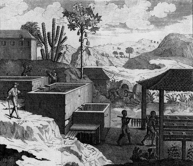Various phases of indigo cultivation and processing are shown in this engraving and details are given in the text. See also images Pomet-92 and NW0010 on this website.