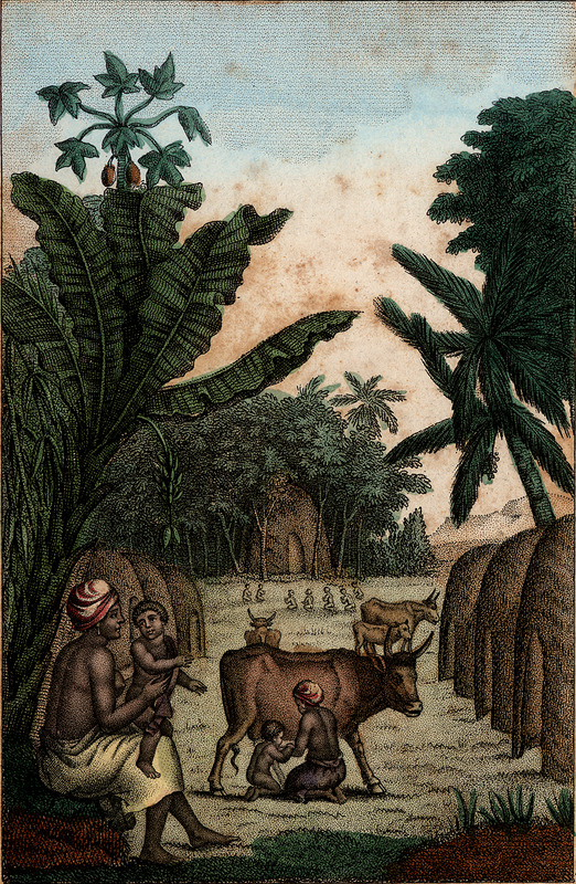 Captioned, Cabanes et Temple des Phylans [Fulani], shows a woman and small child (foreground), another woman milking a cow (center foreground), with conical thatched roof houses in an apparent forest setting. The engraving is an artists idealized/romanticized rendition of a Fulani village in West Africa. In volume 3, the author discusses the habits and customs of African groups represented in Saint Domingue (Haiti), including the Phylans (pp. 160-171), but he does not specifically describe this illustration.
