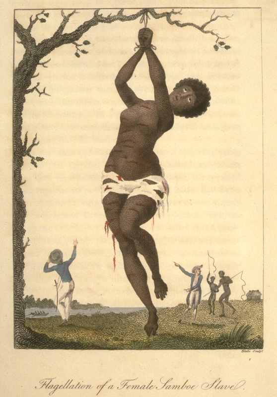 Caption, Flagellation of a Female Samboe Slave. Shows a female hanging from a tree with deep lacerations; in background two white men and two black men, the latter with whips. Stedman witnessed this event in 1774. The female was an eighteen-year old girl who was given 200 lashes for having refused to have intercourse with an overseer. She was lacerated in such a shocking manner by the whips of two negro-drivers, that she was from her neck to her ancles literally dyed with blood. This and other engravings are found in the autobiographical narrative of Stedman, a young Dutchman who joined a military force against rebellions of the enslaved in the Dutch colony. The engravings are based on Stedmanís own drawings and were done by professional engravers. For the definitive modern edition of the original 1790 Stedman manuscript, which includes this and other illustrations see Richard and Sally Price, eds. Narrative of a five years expedition against the revolted Negroes of Surinam (Baltimore: Johns Hopkins University Press, 1988).